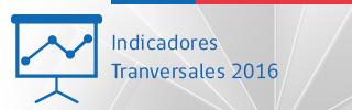 Indicadores transversales 2016