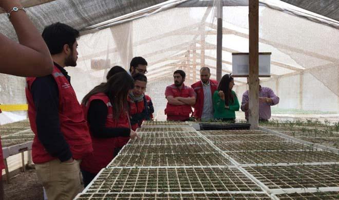 Profesionales del sea atacama visitan vivero el sembrador for Vivero antofagasta